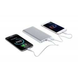 Backers power bank